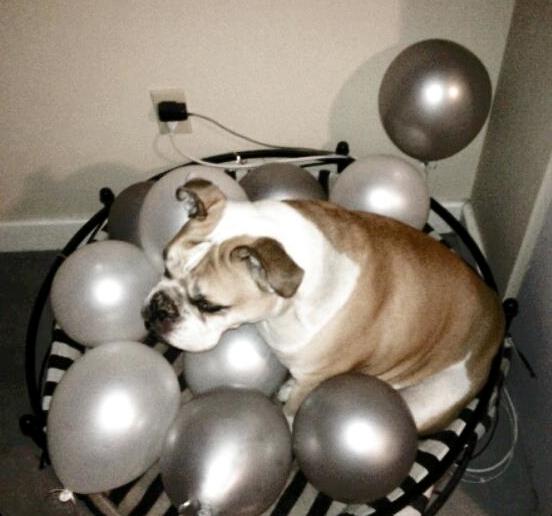 Keg Balloons